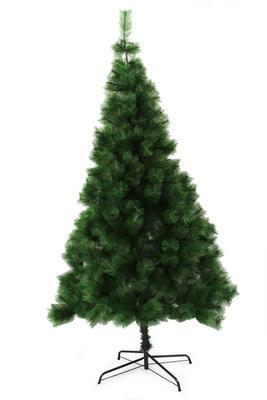 Vánoční stromek zelená borovice, v. 210 cm